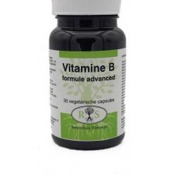 Reformhuis Steenwijk Vitamine B Formule Advanced 30 vcaps